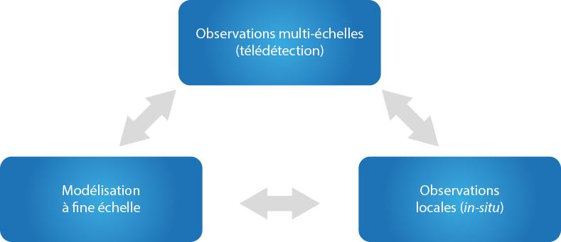 Synergie observation modelisation